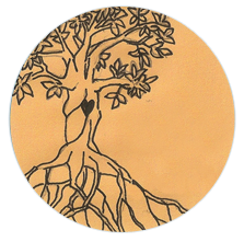 Anne Nans Tree Of Life Behavioral Health Services Watertown Ny